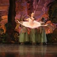 Балет «Спящая красавица» фотографии