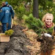 День посадки леса а Казани 2019 фотографии