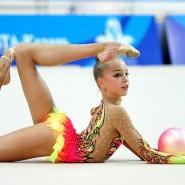 Турнир по художественной гимнастике «На вершине успеха» 2017 фотографии