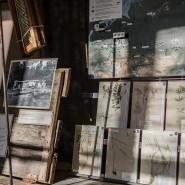 Выставка «Засушенному — верить» фотографии