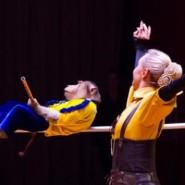 Цирковое шоу «Звери, цирк и Дед Мороз» 2020/21 фотографии