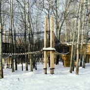Горкинско-Ометьевский лес фотографии