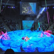 Казанский цирк фотографии