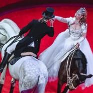 Цирковая программа «Фиеста» 2018 фотографии