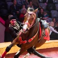 Цирковое шоу «Виртуозы манежа» 2019 фотографии