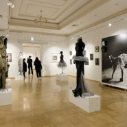 Казанская международная биеннале печатной графики «Всадник» 2021 фотографии