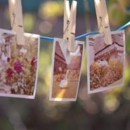 Творческая фотовыставка «Фотосушка» 2019 фотографии