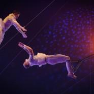Цирковое шоу «Звёзды Москвы» 2019 фотографии