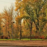 Парк Молодоженов фотографии