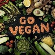 Всемирный день вегетарианства 2018 фотографии