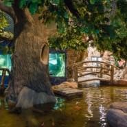 Казанский океанариум фотографии
