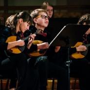 Концерт «Чиполлино» 2019 фотографии