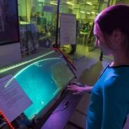 День космонавтики в резиденции креативных индустрий «Штаб» 2019 фотографии