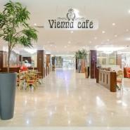 Венское кафе фотографии