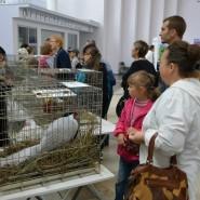 Выставка «Домашний зоопарк» фотографии