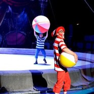 Цирковое шоу Никулина «Планета 13» 2017/18 фотографии