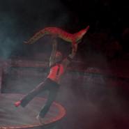 Шоу «Цирк на воде «Остров сокровищ» 2018 фотографии