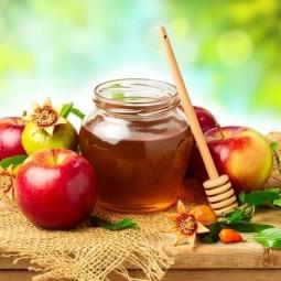 Фестиваль «Яблочный спас» 2017