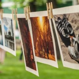 Творческая фотовыставка «Фотосушка» 2019