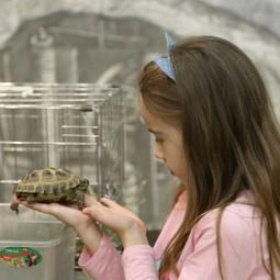 Всемирный День защиты животных в Музее естественной истории Татарстана 2021