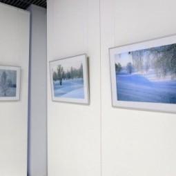 Выставка Юрия Филимонова «Зима»