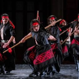 Аргентинское шоу «Pura Sangre» 2018