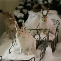 Выставка «В снежном царстве, в морозном государстве»