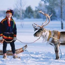 Дни финской культуры 2017