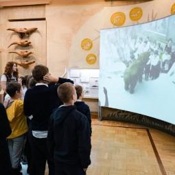 Выходные в Музее естественной истории Татарстана 2020