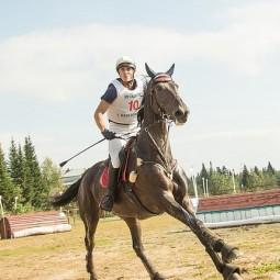 Всероссийские соревнования по конному спорту 2017