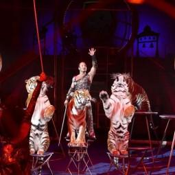 Цирковое шоу Никулина «Планета 13» 2017/18