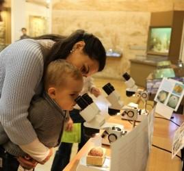 Всемирный день животных в Музее естественной истории Татарстана 2020