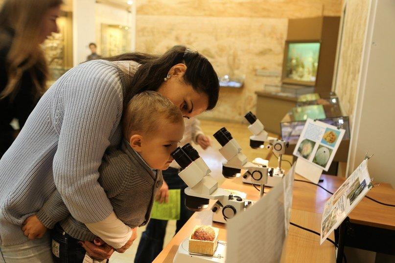 Всемирный день животных вМузее естественной истории Татарстана 2020