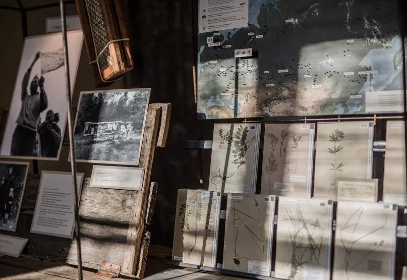 Выставка «Засушенному— верить»