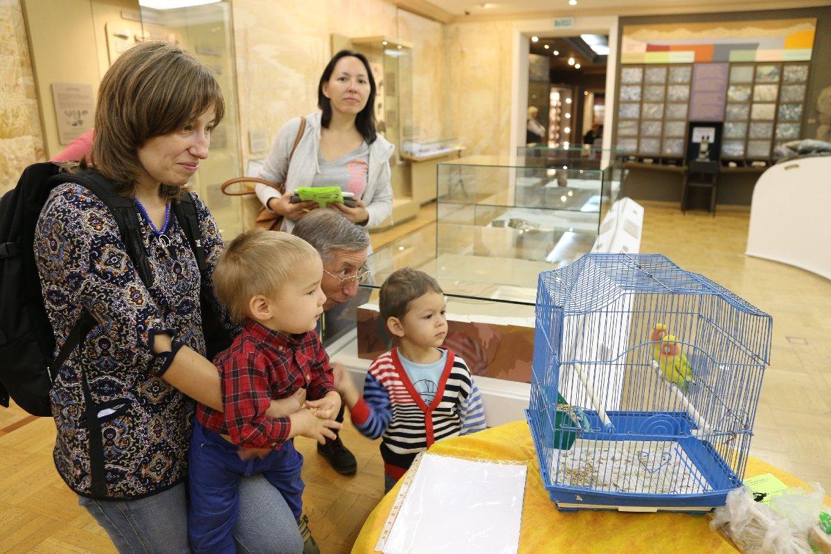 Всемирный День Земли вМузее естественной истории Татарстана 2018