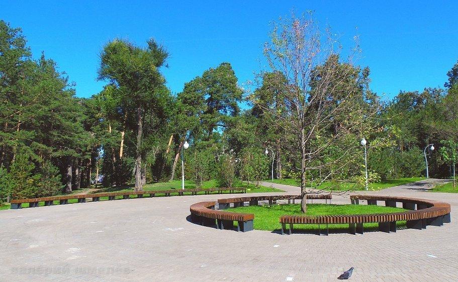 Парк «Сосновая роща»